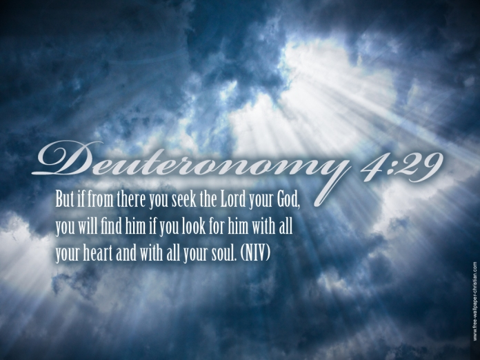 Desktop-Bible-Verse-Wallpaper-Deuteronomy-4-29