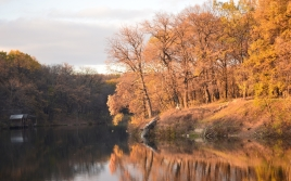 autumn_trees_reservoir_46012_1680x1050