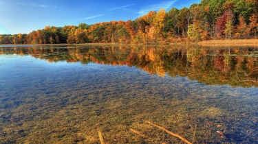 autumn_water_transparent_bottom_trees_branches_sky_blue_clearly_brightly_62817_1366x768