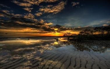 beach_bank_bushes_decline_48308_1920x1200