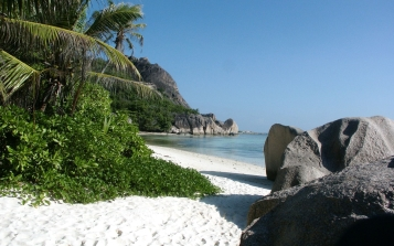 beach_tropics_palm_trees_coast_48635_2560x1600