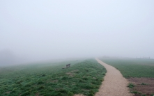 bench_track_fog_haze_road_45929_1680x1050