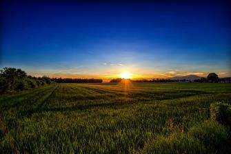 carinthia_austria_grass_sunset_107891_2560x1707