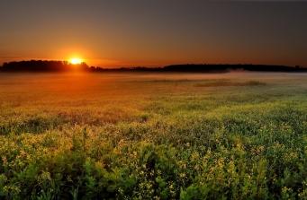 field_decline_orange_sun_disk_haze_twilight_55041_1920x1257