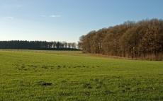 field_grass_autumn_trees_fence_5611_1920x1200