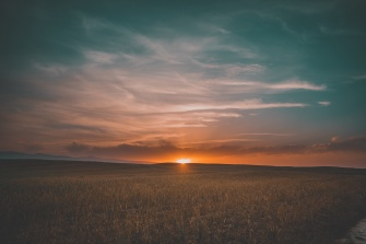 field_grass_sunset_sky_115891_6000x4000