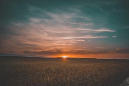 field_grass_sunset_sky_115891_6000x4000
