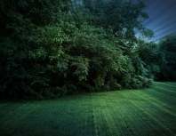 field_trees_nature_landscape_82782_2595x2014