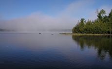 fog_river_coast_trees_ripples_22586_1920x1200