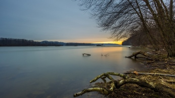 forest_river_snags_evening_sunset_87149_1366x768