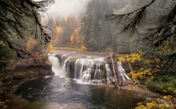 forest_river_waterfall_nature_landscape_82754_1920x1200