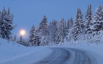 full_moon_night_sky_road_lifting_snow_wood_trees_48290_1920x1200
