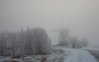 haze_fog_winter_mill_bushes_snow_hoarfrost_46682_1680x1050