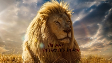 He-has-destroyed-death-lion-christian-wallpaper-hd_1366x768