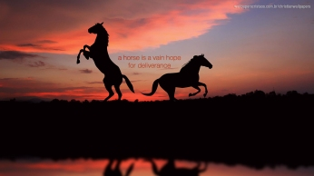 horse-is-vain-hope-for-deliverance-christian-wallpaper-hd_1366x768