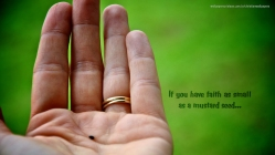 If-you-have-faith-as-small-as-a-mustard-seed-christian-wallpaper_1366x768 (1)