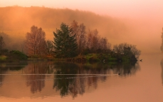 lake_morning_swimming_duck_fog_dawn_cool_trace_smooth_surface_island_trees_62319_2560x1600
