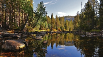 lake_wood_stones_purity_landscape_reflection_trees_fir-trees_reserve_61202_1366x768