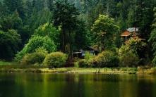 lodge_wood_lake_coast_55440_1680x1050