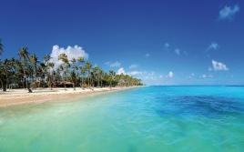 maldives_tropical_beach_palm_trees_sand_90403_2880x1800