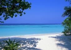 maldives_tropical_beach_sand_palm_trees_sea_87999_2950x2094