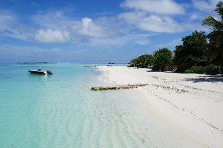 maldives_tropical_beach_shore_90631_4912x3264