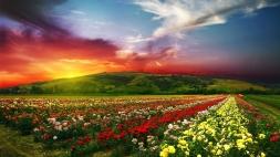 Most-Beautiful-Ultra-HD-4k-Wallpapers