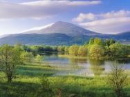 mountain_trees_river_22790_1600x1200