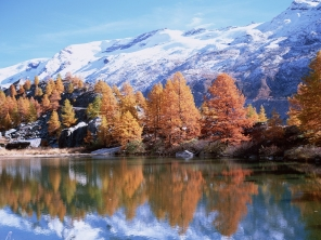 mountains_autumn_trees_reflection_lake_sun_22245_1600x1200