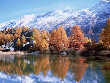 mountains_autumn_trees_reflection_lake_sun_22245_1600x1200