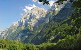 mountains_grass_trees_greenery_84609_2560x1600