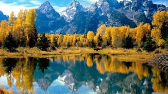 nature_autumn_mountains_trees_91374_1366x768