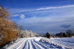 netherlands_road_trees_sky_clouds_snow_clearly_60911_1920x1280