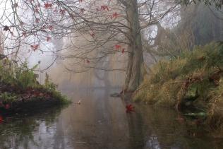 painting_art_trees_lake_leaves_shrubs_fog_47993_3872x2592