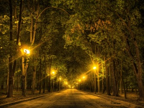 park_alley_trees_lights_105345_3968x2976