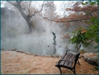 park_bench_statue_fog_morning_46223_3300x2484
