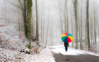 park_person_umbrella_snow_road_fog_walk_46209_1680x1050