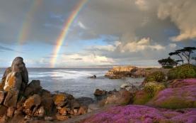 rainbow_sea_coast_stones_flowers_57406_1680x1050