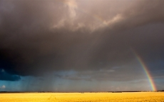 rainbow_sky_field_clouds_after_a_rain_autumn_26673_1920x1200