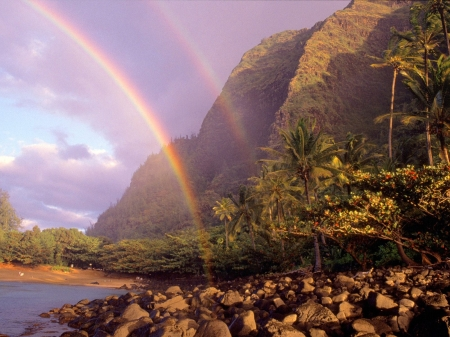 rainbow_sky_stones_clouds_palm_trees_coast_hawaii_14668_1600x1200