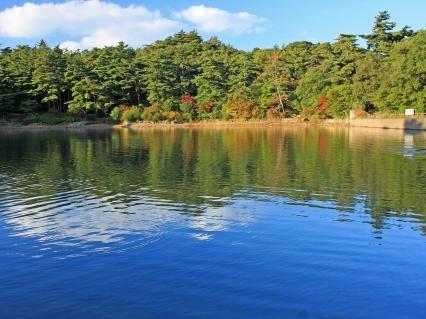 river_autumn_beach_trees_90995_1600x1200