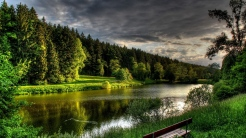 river_summer_bench_trees_99381_1366x768