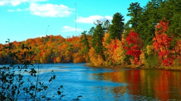 river_trees_autumn_for_90933_1366x768
