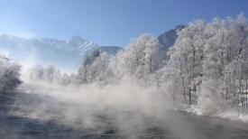 river_trees_fog_morning_haze_54993_1366x768