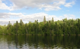 river_trees_wind_sky_81883_2560x1600