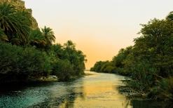 river_tropics_vegetation_bushes_trees_sky_silence_61525_2560x1600