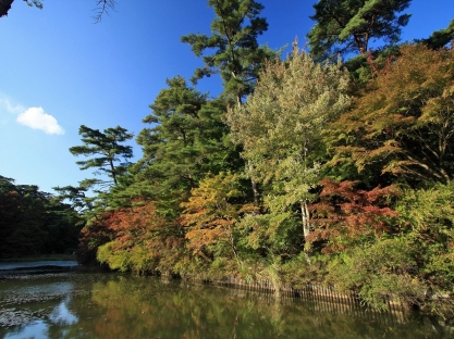 river_turn_trees_autumn_91072_1600x1200
