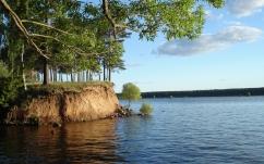 river_water_tree_branch_bush_coast_clay_57347_1680x1050