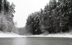 river_winter_trees_ice_snow_black_white_84784_2560x1600