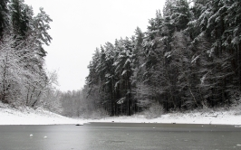 river_winter_trees_ice_snow_black_white_84784_2560x1600